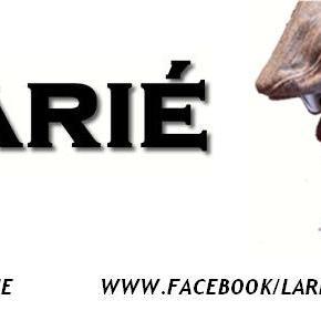 "NEW MUSIC!!! Listen to Larié's – ""Fallen"" @SoulofLarie"