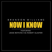 The Mellow Mix Pick Week #7 – Brandon Williams – Now I Know feat. Jesse Boykins III & Robert Glasper @bwilliamsmusic_