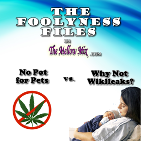 The Foolyness Files:  Why Not Wikileaks vs. No Pot for Pets